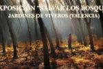 Exposición Salvar los bosques