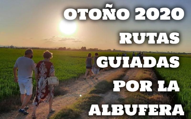 Rutas guiadas gratuitas por la Albufera de Valencia